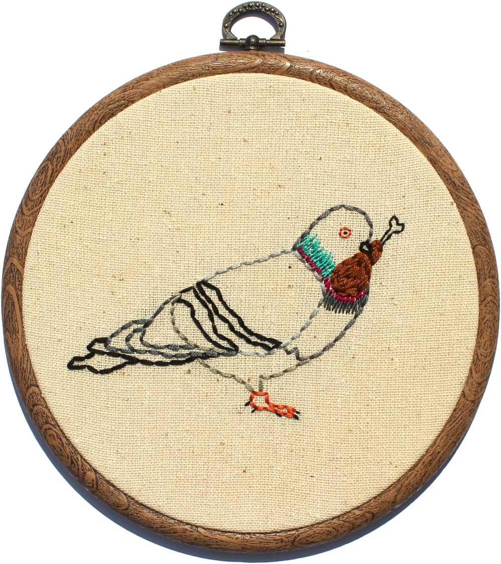 rencontre pigeon